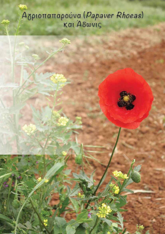 Περιοδικό Αγρότης - Έκδοση Νοεμβρίου15 - Ιουνίου16 dba37b5961f